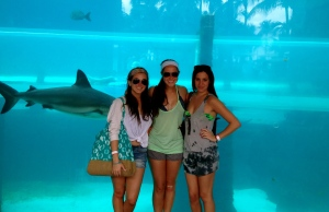 This photo was taken in front of real-life sharks. One of the resort's water slides lets riders out in a tunnel surrounded by caged sharks!